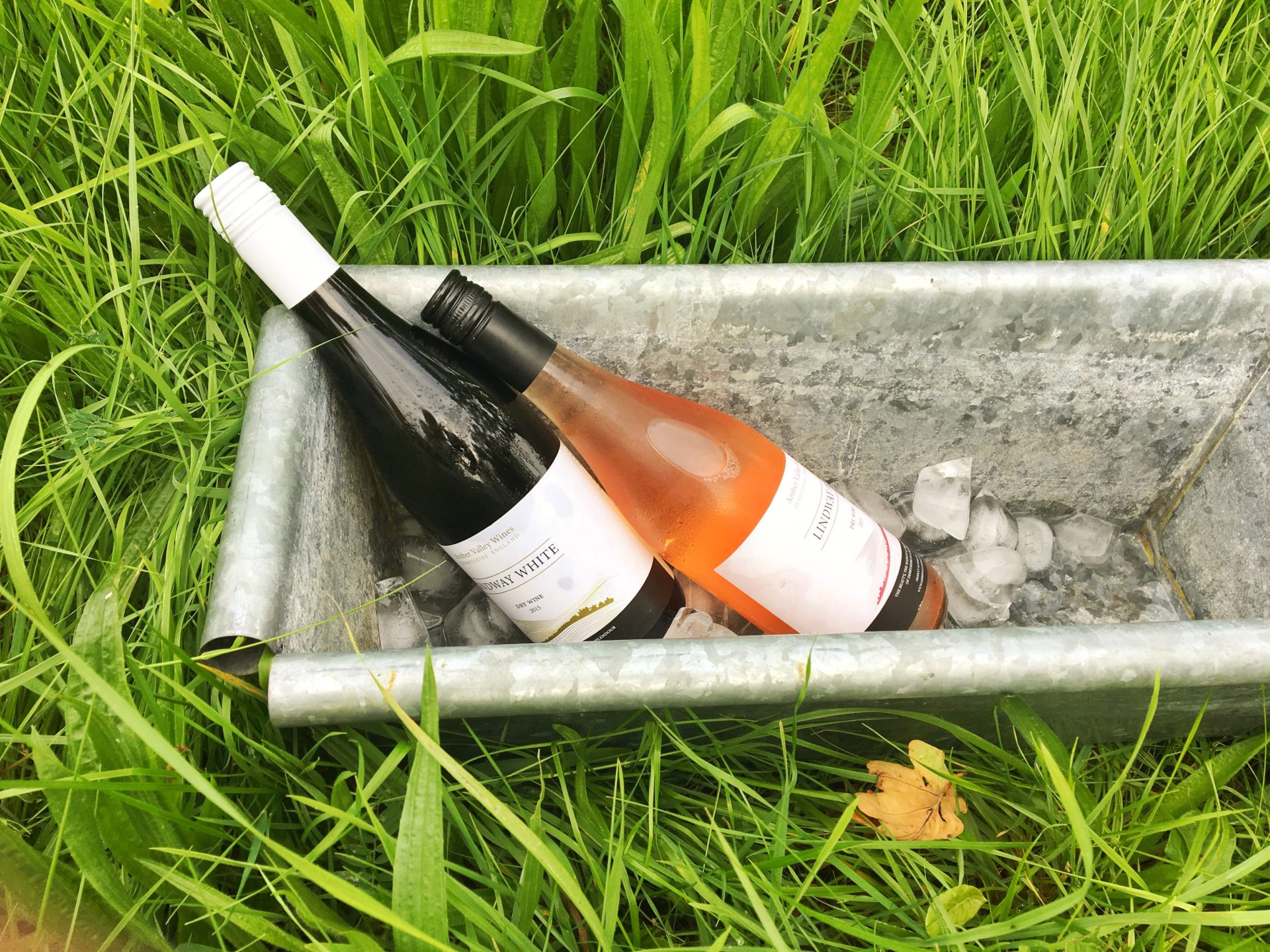 A bottle of the Lindway white and rose´ chilling in a silver cooler in long green grass - August 2016 (by Lucy Arterton)
