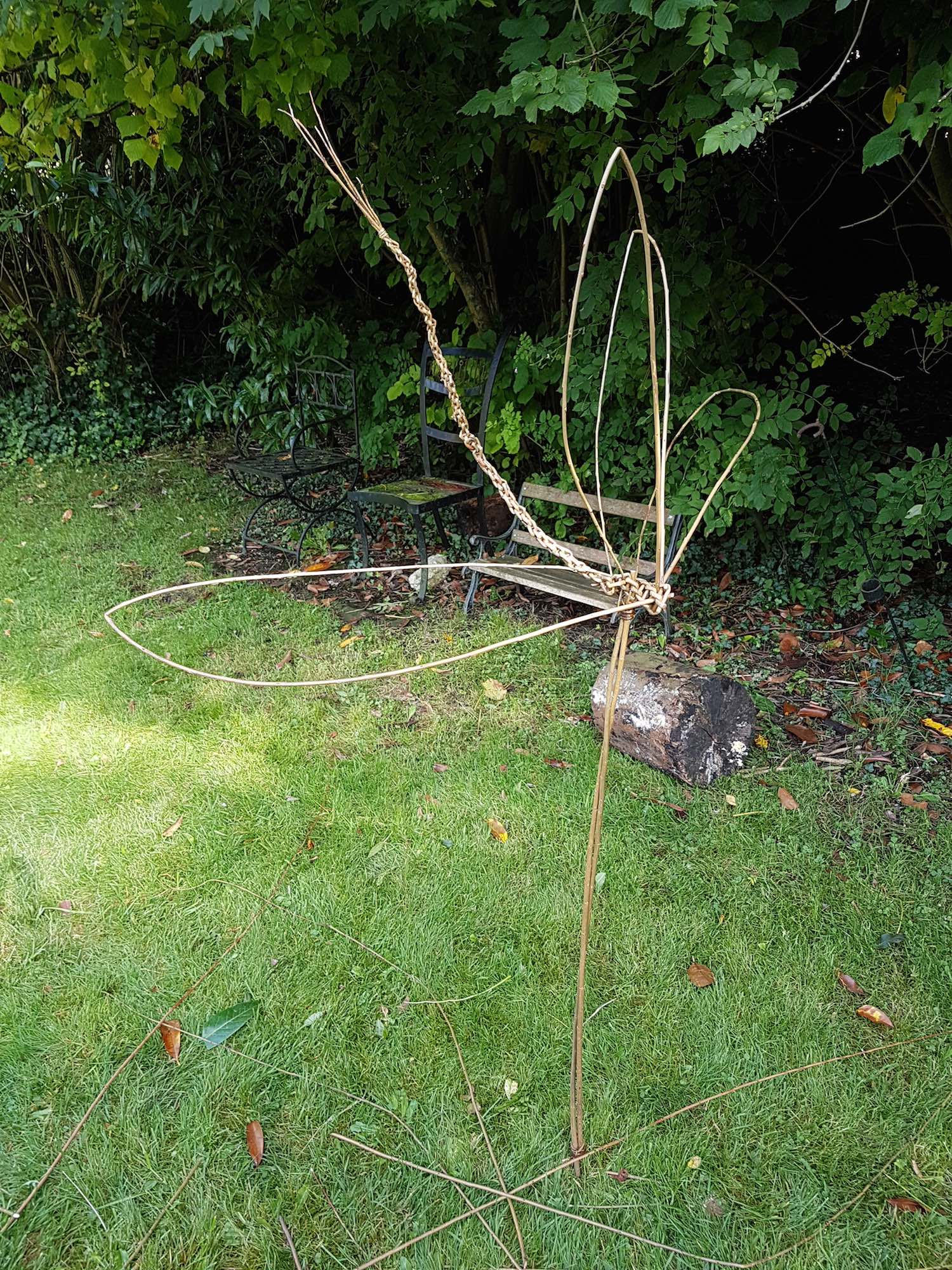 Darley House Willow Sculpture Dragonfly
