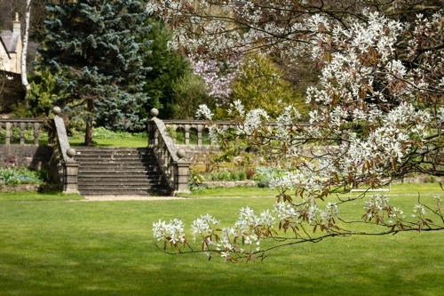 A grand stone balustrade stretches across a verdant lawn, while amelanchier blossoms are in sharp focus in the foreground.